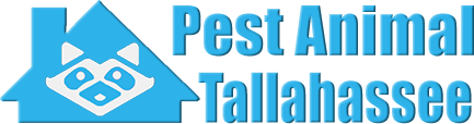 Tallahassee Wildlife and Animal Removal